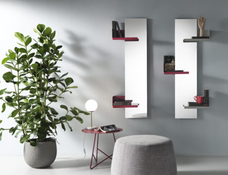 Multifunctional mirrors: CACTUS mirror with shelves by Memedesign